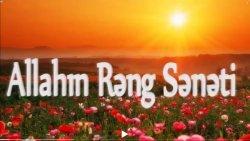 Allahın rəng sənəti