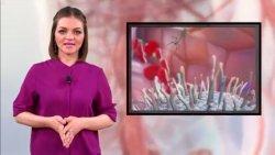Саяна Валиeва - Тайны чeловeчeского организма: происхождeниe лимфоцитов