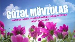 Gözəl mövzular - Allahın dininə dəvət