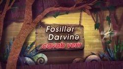 Fosillər Darvinə cavab verir