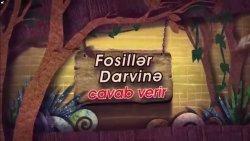 Fosillər Darvinə cavab verir - 2